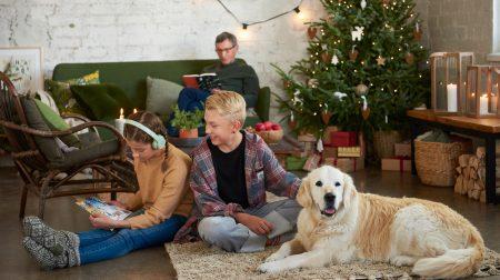 Jouluinen tunnelma huoneessa, jossa kaksi lasta, aikuinen ja koira sekä joulukuusi ja partiolaistena adventtikalenteri